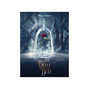 Hachette Livre La Belle Et La Bête Disney Cinéma