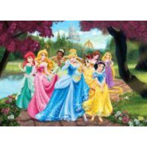 Poster XXL Château Princesse Disney