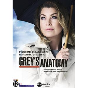 Grey's Anatomy - Saison 12