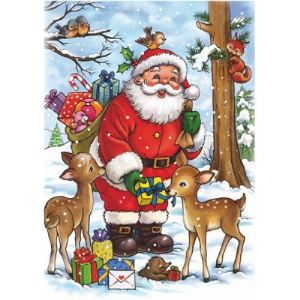 Dtoys Puzzle Collection de Noël - Le Père Noël et les animaux de la forêt 35 pièces