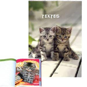 Oberthur Cahier de texte Chats tigrés