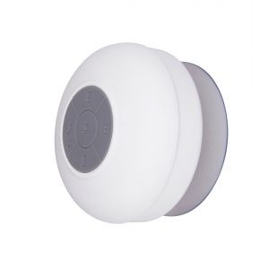 Dual Haut parleur Bluetooth étanche