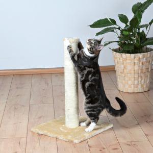 Trixie Arbre à chat Parla (62 cm)