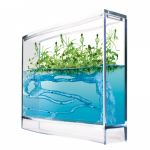 Fourmilière plantarium avec gel nourrissant TAOS