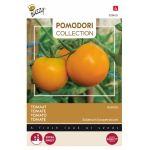 Thème - Tomate Orange - Zloty Ozarowski
