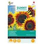 Tournesol - Sunny Flowers - Ring of Fire