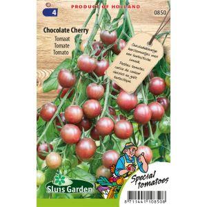 Tomate Chocolade Cherry