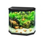 Aquarium noir 30 avec LED 40 x 20 x 40cm