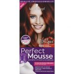 Schwarzkopf Perfect mousse 689 chatain cranberry