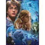 Ravensburger 14821 - Puzzle Harry Potter à Poudlard 500 pièces - Puzzle Adulte