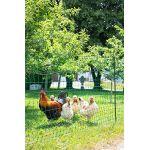 Kerbl Filet à volailles PoultryNet Vert, double pointe 25m non électrifiable