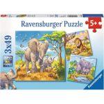 Ravensburger Animaux géant sauvage - 3 puzzles 49 pièces