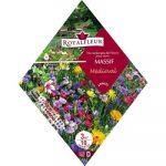 Royalfleur PFRK08338 Graines de Mélange de Fleurs mon Massif Médiéval 3 m²