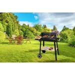 Proline CHARCB - Barbecue
