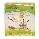 Safari Ltd LTD Ltd 662616 - Cycle De Vie - Moustique