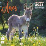 Editions Artémis Calendrier ânes 2021