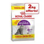 Royal Canin Indoor27 croquettes pour chats d'intérieur sac 12 kg dont 2 kg offerts