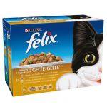 Felix Emincés En Gelée Pour Chat A La Volaille 12 X 100 g