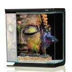 Marina Aquarium Betta Kit Bouddha 3 Litres