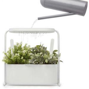 Umbra Jardinière pour herbes aromatiques giardino