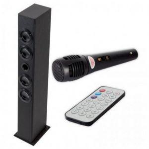 Iwown Tour de Son avec Microphone Karaoké USB/SD/MMC 20W
