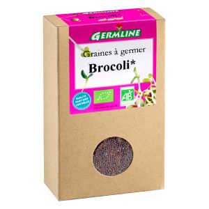 Germline Graines à germer Brocoli bio