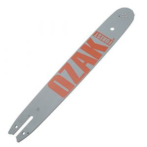 Jardiaffaires Guide Pro pour tronçonneuse Stihl 40cm .325 1,6mm = Oregon 163SLBA074
