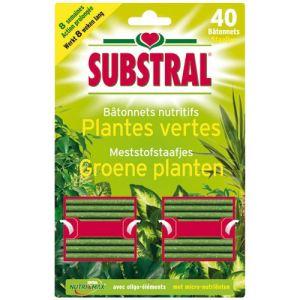 Substral 40 bâtonnets nutritifs pour plantes vertes