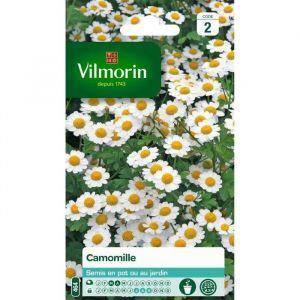 Vilmorin Camomille - Sachet de graines