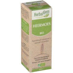Image de Herbalgem Concentré de bourgeons de Prêle Bio 50 ml