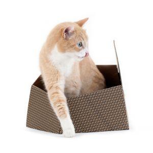United Pets Abris en carton pour chat Kitty
