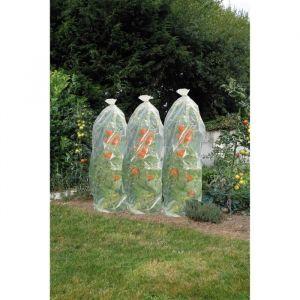 Nature Gaine film de croissance perforé pour tomates 1500x50cm