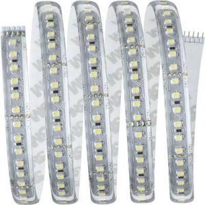Paulmann Ruban LED (Base) avec connecteur mâle MaxLED 1000 70669 24 V 300 cm blanc lumière du jour 1 pc(s)