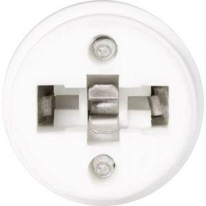 Renkforce Adaptateur pour douille d'ampoule E14 399894 230 V 75 W 3 pc(s)