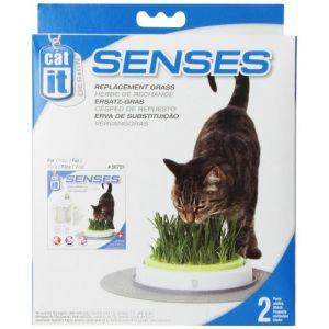 Catit Recharge jardin d'herbe à chat