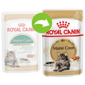 Royal Canin Croquette Breed Maine Coon pour chat 48 x 85 g