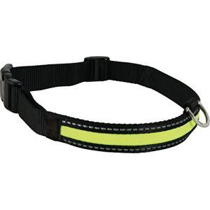Zolux Collier pour chien lumineux rechargeable taille M 36 à 51 cm