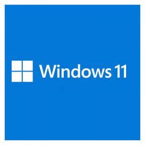 Windows 11 Famille 64 bits - OEM (DVD) [Windows]
