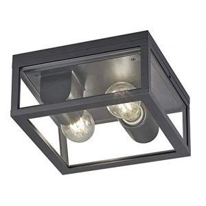 Trio Leuchten Plafonnier d'extérieur Garonne 601860242 - En aluminium moulé sous pression - Anthracite - 2 ampoules E27 non incluses