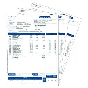 Feuilles Pré-imprimées Bulletin de paye - 2017 - 400 feuilles [Windows]