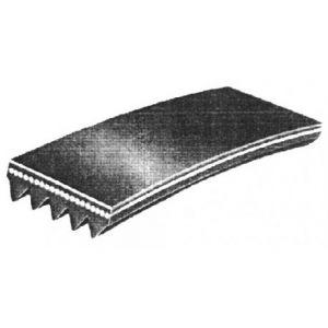 Courroie pour sèche-linge Balay Ignis Philips rainurée 1956P-5090456