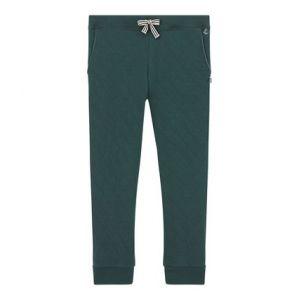 Petit Bateau Pantalon, Vert (Sherwood 04), Taille Fabricant: 12A 12 Ans Garçon