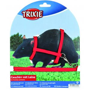 Trixie Harnais en nylon avec laisse pour rats et furets