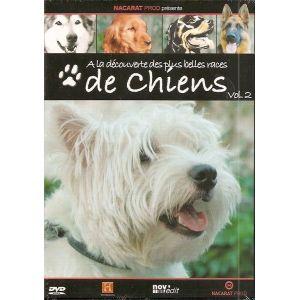 A la découverte des plus belles races de chiens - Volume 2