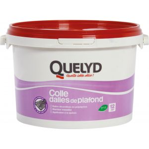 Quelyd Colle dalles plafond 4KG -