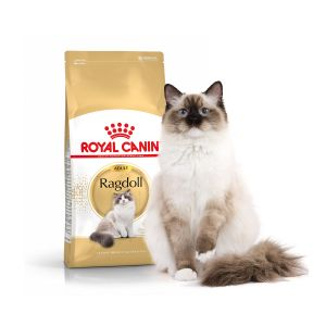 Royal Canin Feline Breed Nutrition Ragdoll Adult - Sac 2 kg