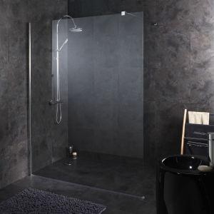 Planetebain Paroi de douche fixe tout en inox (160 x 195 cm)