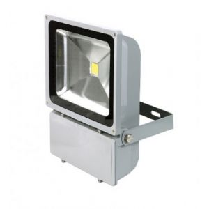 Ribimex PRSPOT101M - Projecteur à Led 100 W