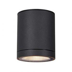 SLV ENOLA, plafonnier extérieur, rond, M, anthracite, LED, 10W, 3000K/4000K, IP65 - Lampes sur pied, murales et de plafond (extérieur)