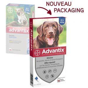Bayer Advantix grand chien (25kg-40kg) boite de 24 pipettes